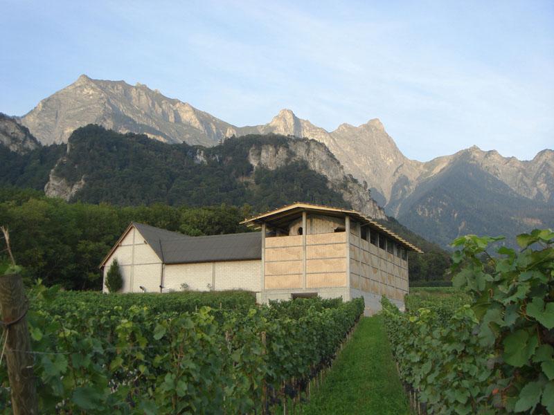 Das Weingut Gantenbein in Fläsch ist für seine guten Weine bekannt. In der Ansicht von Südwesten sieht man den Erweiterungsbau, der eine traditionelle Gebäudeform mit innovativer Fassadentechnik verbindet.