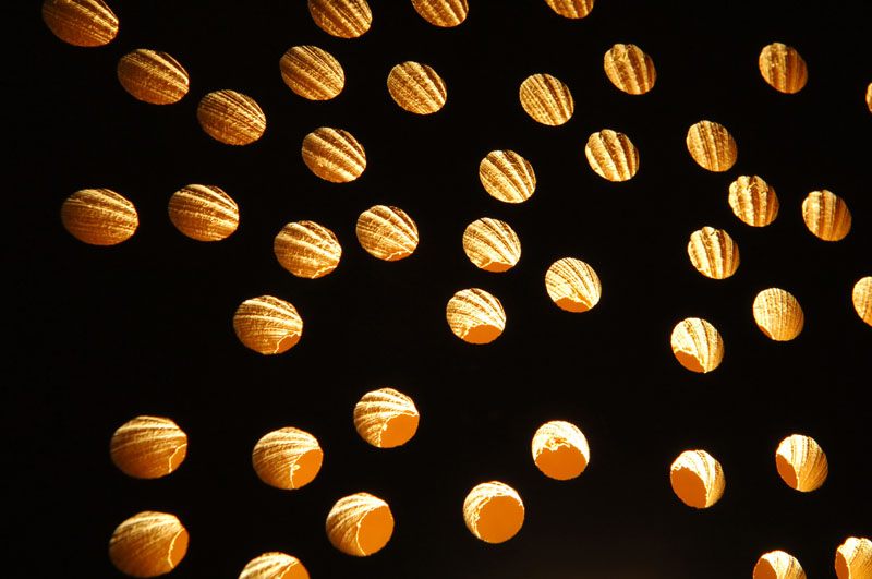 Die Lichtreflektion wird an jeder Lochwange sichtbar.