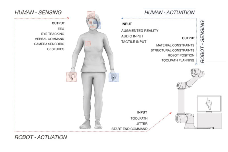 Diagram describing possible decision making–sensing / actuation processes between a human operator and maschinic/robotic unit