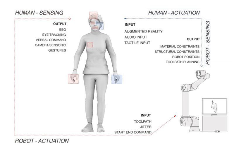 Diagram describing possible decision making–sensing / actuation processes between a human operator and maschinic/robotic unit